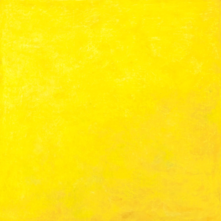 jaune, ségolène perrot