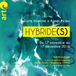 Hybride(s)